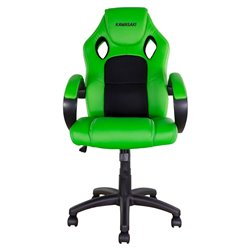 BikeTek Rider Chair Green With Black Trim - Kawasaki