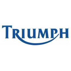 Sticker Triumph blauw 22 cm
